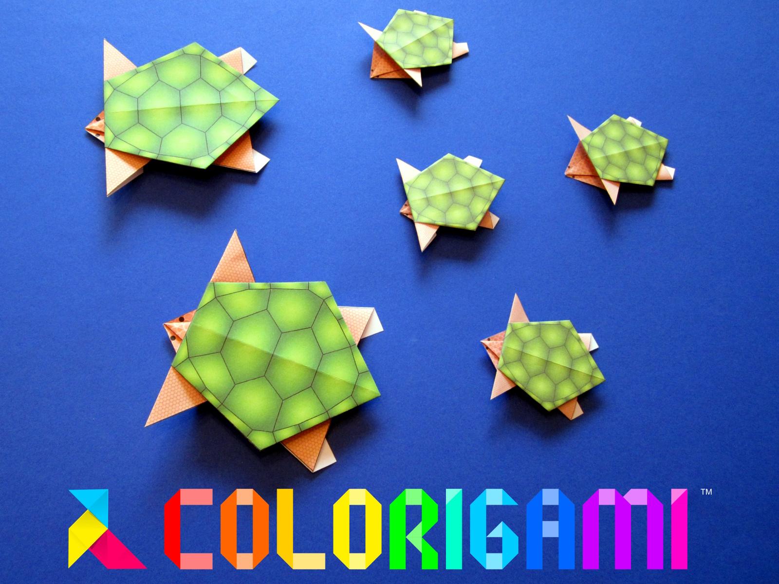 Colorigami